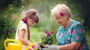 Платят ли пенсионерам за расходы на внуков