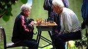 Кто останется без пенсии, работая официально: профессии и виды занятости, на которые нужно обратить внимание