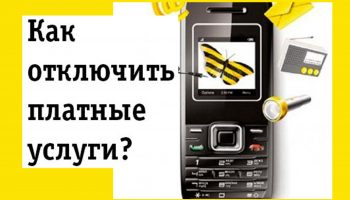 Отключить платные услуги Билайн на телефоне: пошаговая инструкция с фото