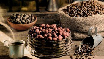 Засуха в Бразилии достанет каждого: эксперты прогнозируют подорожание кофе во всем мире на 20%